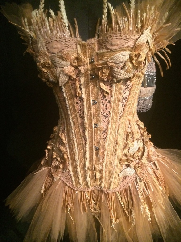 Embroidered Tulle, Lace Corset